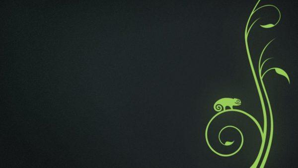 Обложка к записи Релиз OpenSUSE 11.3