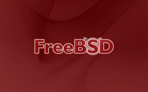 Обложка к записи FreeBSD Journal — первый номер