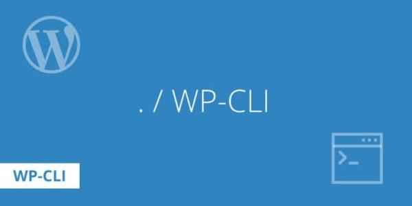 Обложка к записи Отладка правил перезаписи URL в WordPress