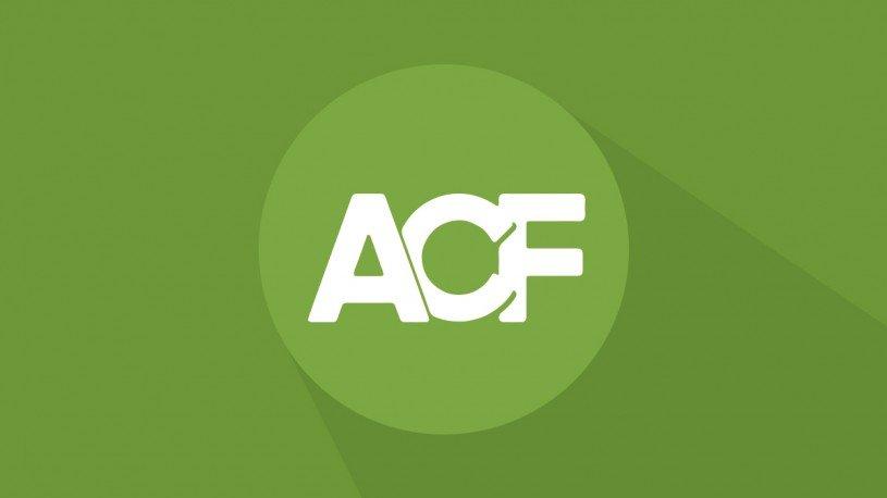 Обложка к записи Оптимизация плагина ACF