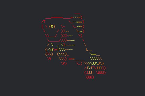 Обложка к записи Установка Fish Shell в Ubuntu